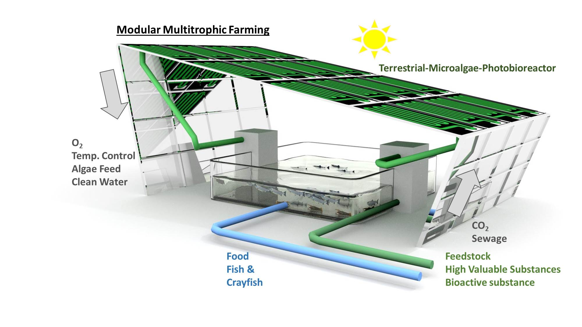 Modular Multitrophic Farming - Aquapolyk3